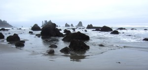 3rd Beach, Giants